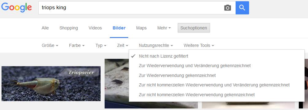google bildersuche nutzungsrechte